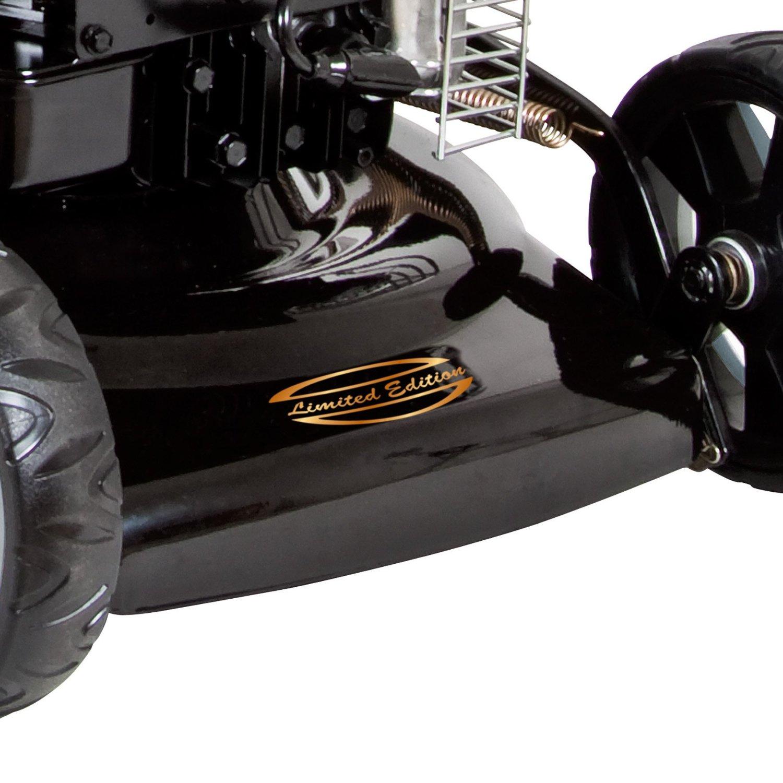 benzinrasenm her mit radantrieb vergleiche neu. Black Bedroom Furniture Sets. Home Design Ideas